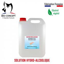 Solution Hydro-Alcoolique 5L